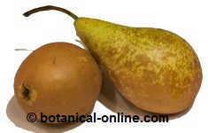 cual es el acido urico normal de una persona como disminuir el acido urico del cuerpo acido urico dieta y tratamiento