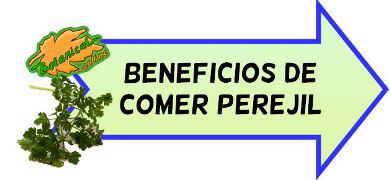 beneficios comer perejil
