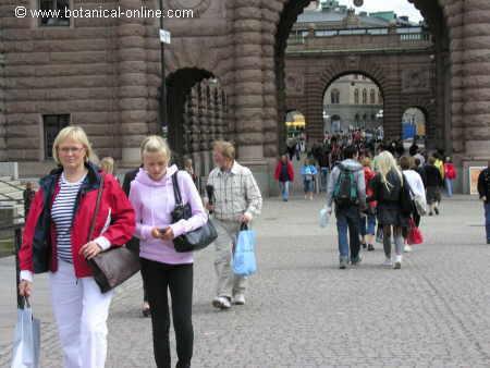 Personas de pelo rubio y piel clara en una calle de Oslo.