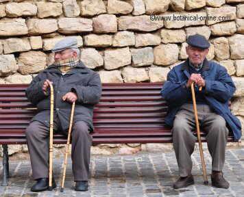 señores mayores