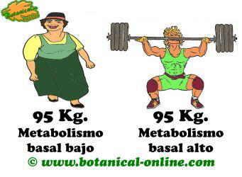 diferencias de peso ideal segun la complexion