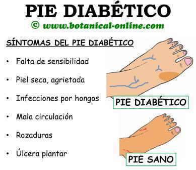 sintomas del pie diabético, palidez, rozaduras, durezas, ulcera plantar, mala circulacion, piel seca