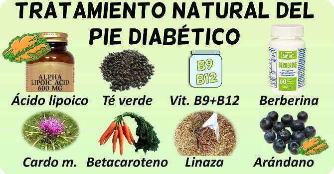 remedios naturales pie diabetico suplementos plantas medicinales fitoterapia