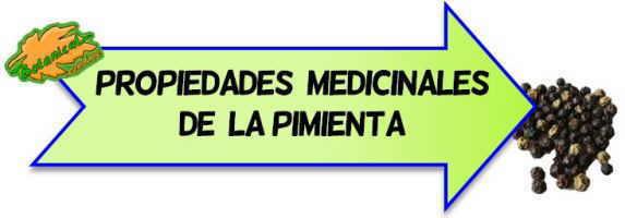 propiedades medicinales de la pimienta