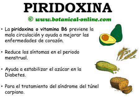Vitamina b6 piridoxina - En que alimentos esta la vitamina b12 ...