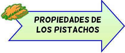 propiedades pistachos