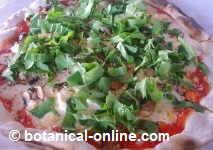 pizza rucula