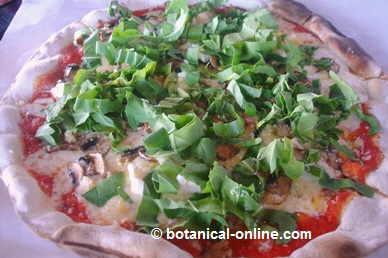 pizza con rucula fresca