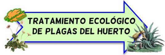 tratamiento ecologico plagas