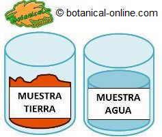 Plan de fertilización del maíz muestras
