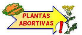 plantas abortivas cartel
