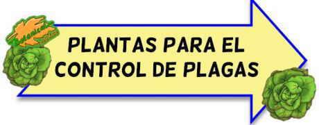 plantas control de plagas