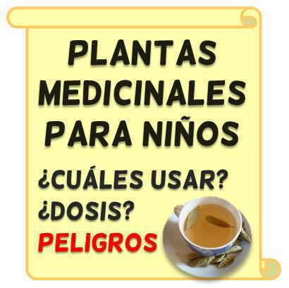 plantas medicinales y remedios naturales para niños