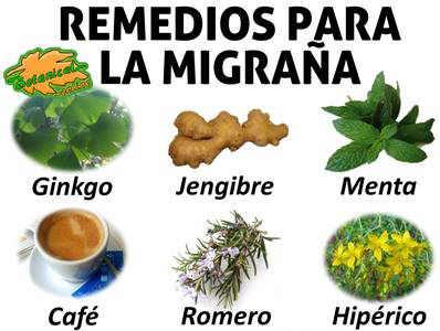 plantas medicinales y remedios para la migraña