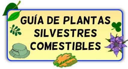 guia plantas silvestres