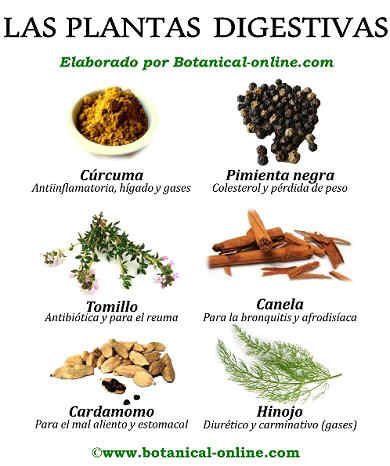 Ailments And Home Remedies