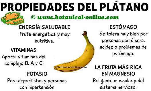 Valor nutricional del plátano