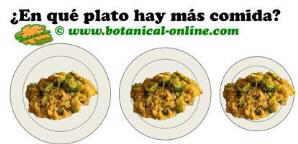 tamaño plato dieta. En platos grandes parece que haya menos comida.