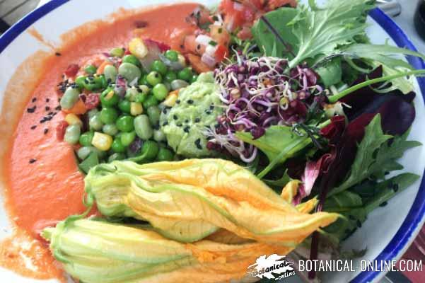 plato de dieta vegetariana