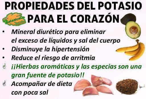 Potasio para el coraz n y la hipertensi n - Alimentos que suben la tension ...