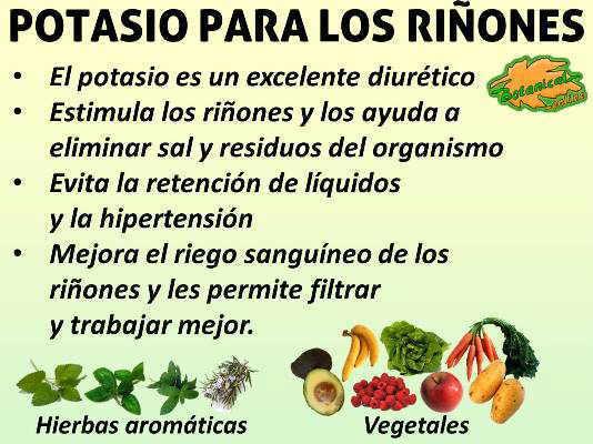 Potasio para los ri ones for Potasio para plantas