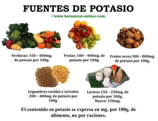 Potasio - Alimentos en potasio ...