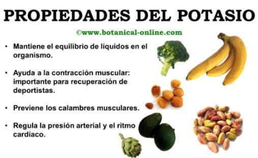 Propiedades del potasio - En que alimentos encontramos magnesio ...
