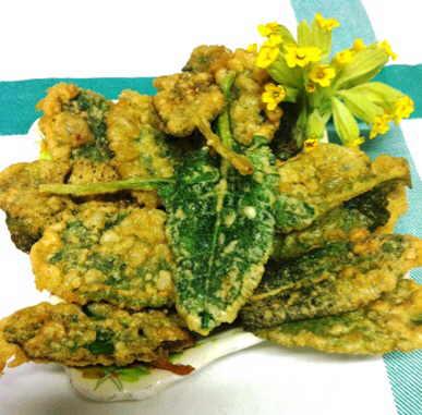 receta de hojas de primavera planta silvestre comestible