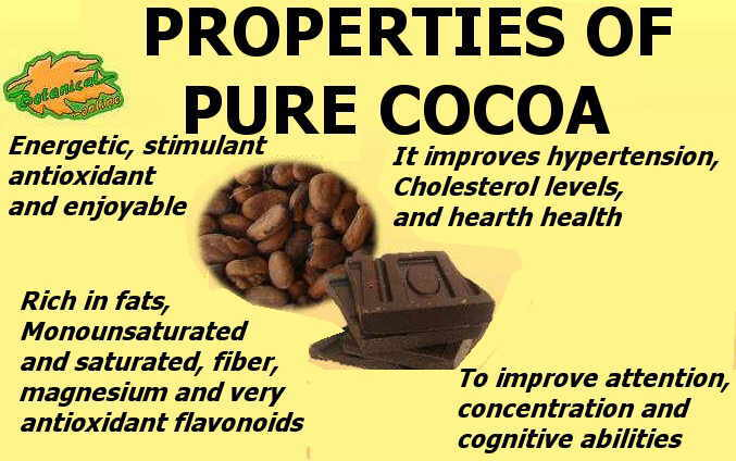 main nutritional properties of cocoa