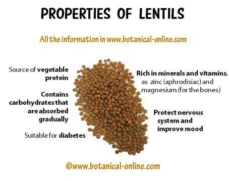 Properties of lentils