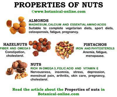 Properties of nuts