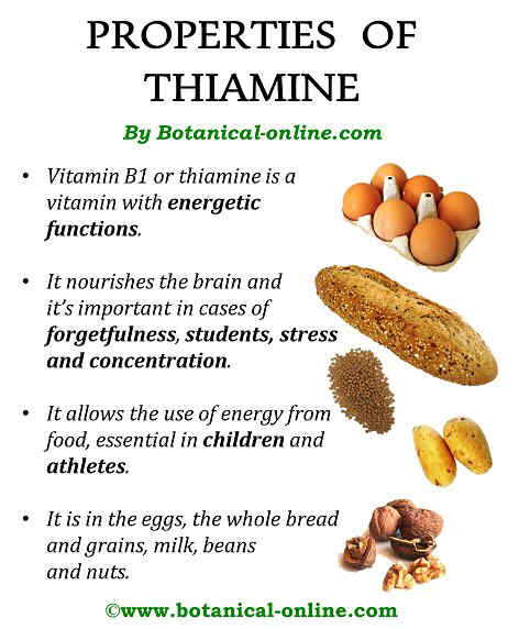 PProperties of thiamin