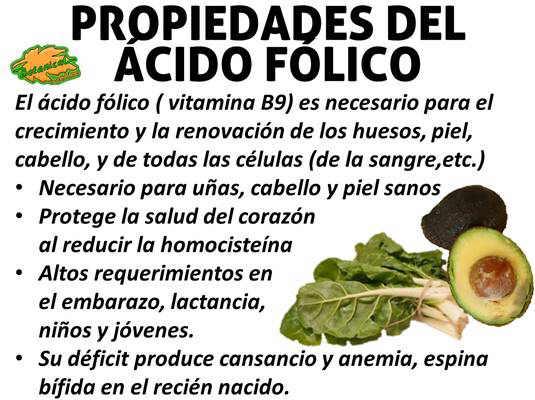 propiedades del acido folico o vitamina b9
