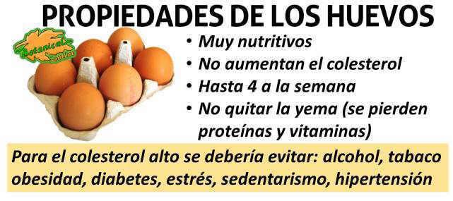 propiedades del huevo y colesterol, quitar la yema