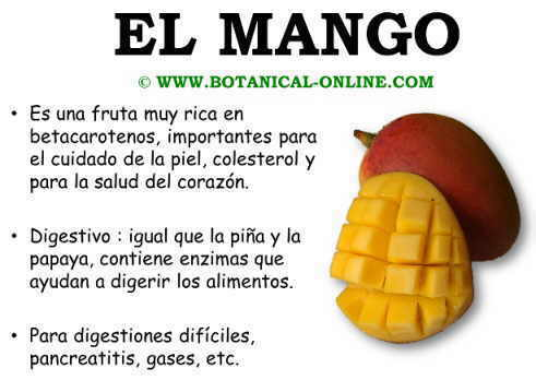 Propiedades del mango