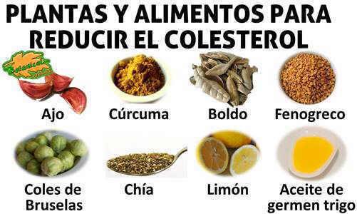 Dieta para el colesterol - Alimentos beneficiosos para el colesterol ...