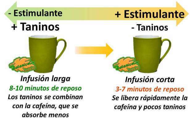 propiedades y beneficios del te segun tiempo de infusion, taninos y cafeina
