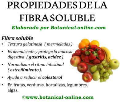 Propiedades de la fibra soluble
