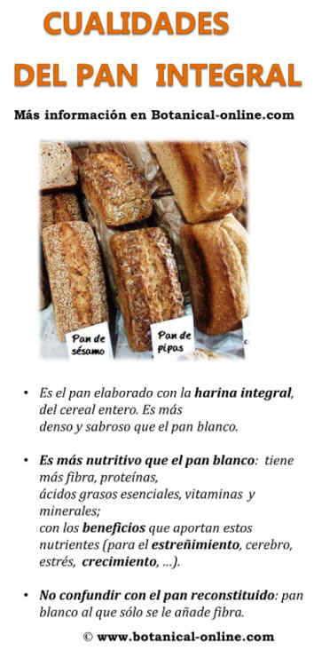 Propiedades del pan integral