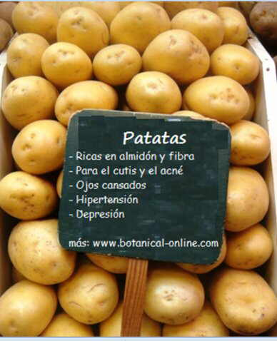 propirdades de las patatas