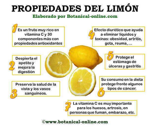 Limón, propiedades curativas. Propiedadeslimon