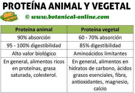 diferencia entre nutricion alimento: