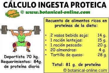 calcular requerimientos de proteina para deportista en el deporte