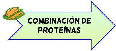 proteinas completas combinacion