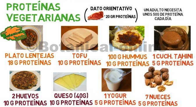 Prote nas para vegetarianos - Q alimentos son proteinas ...