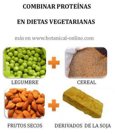 Combinar prote nas vegetales - Alimentos vegetales ricos en proteinas ...