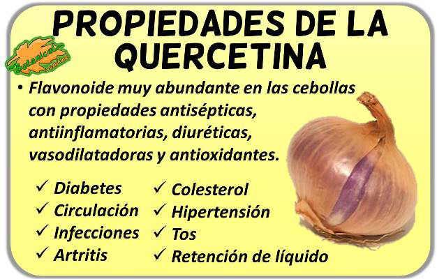 propiedades de la quercetina o quercitina, flavonoide de la cebolla