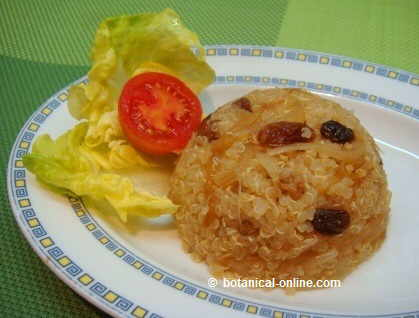 quinoa with onion and raisins