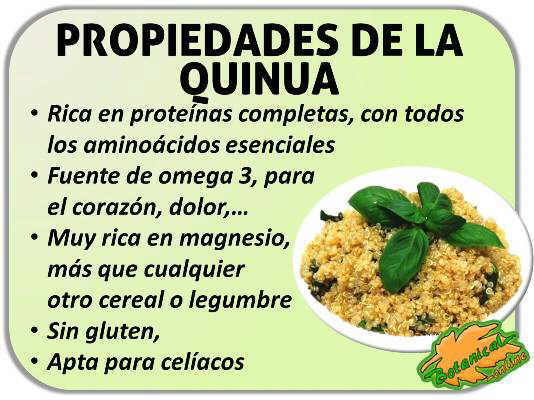 propiedades semillas de quinoa