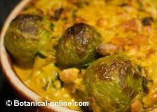 Receta coles de bruselas con salsa curry - Cocer coles de bruselas ...
